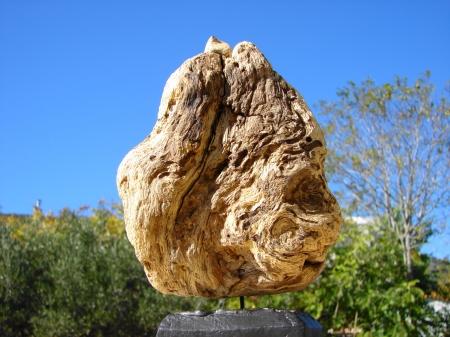 """ The Loner "" Driftwood & stone - Αλίκτυπο ξύλο & πέτρα 30 cm."
