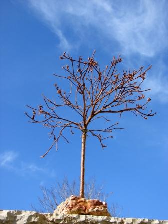 """"""" L'albero della Vita """" 55 cm."""