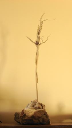 """"""" Sacrifice """" Driftwood on a stone 140 cm."""