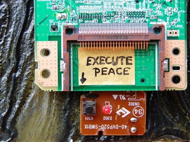 Execute PEACE