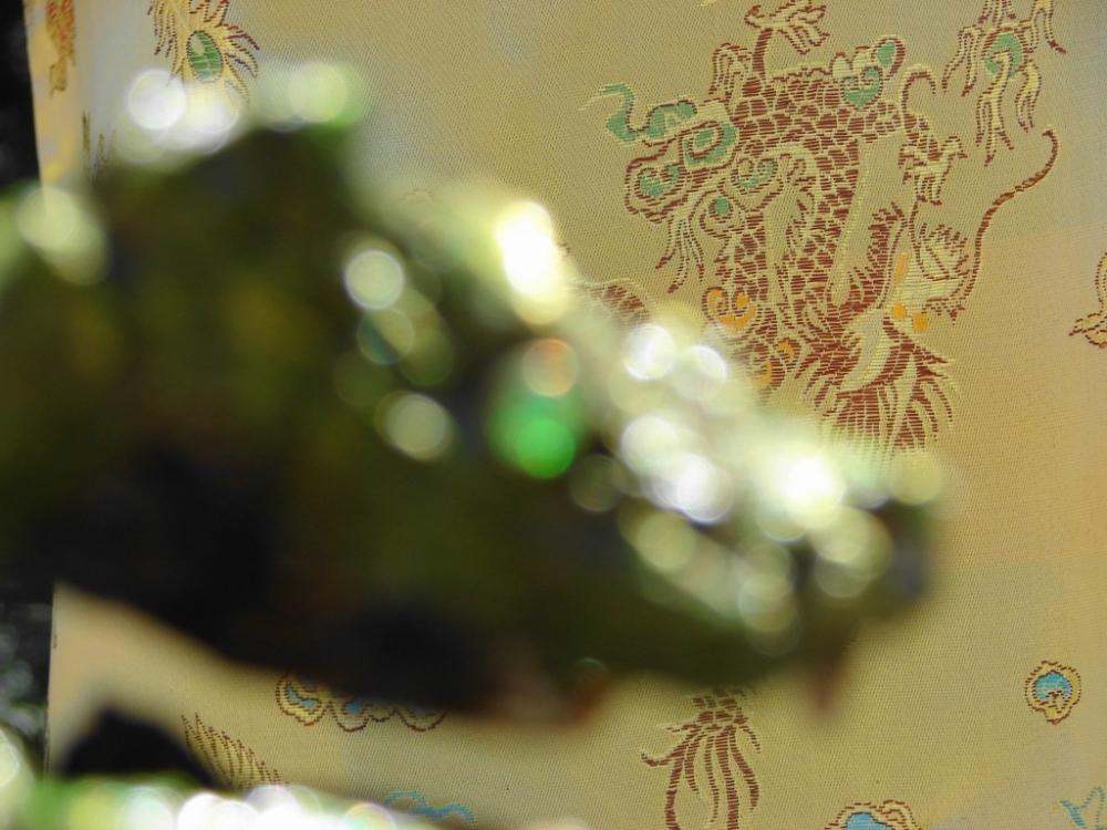 The Green Dragon (1/6)